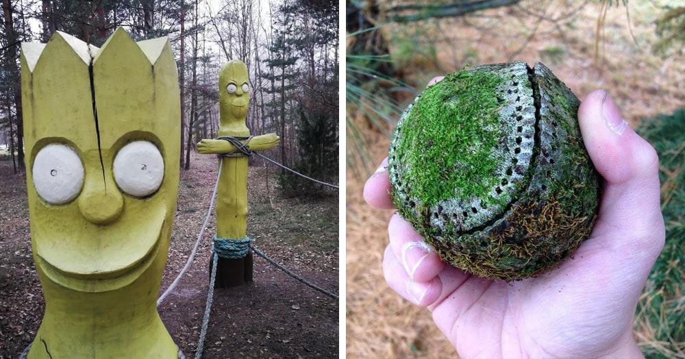 20 неожиданных и странных вещей, которые были найдены во время лесных прогулок