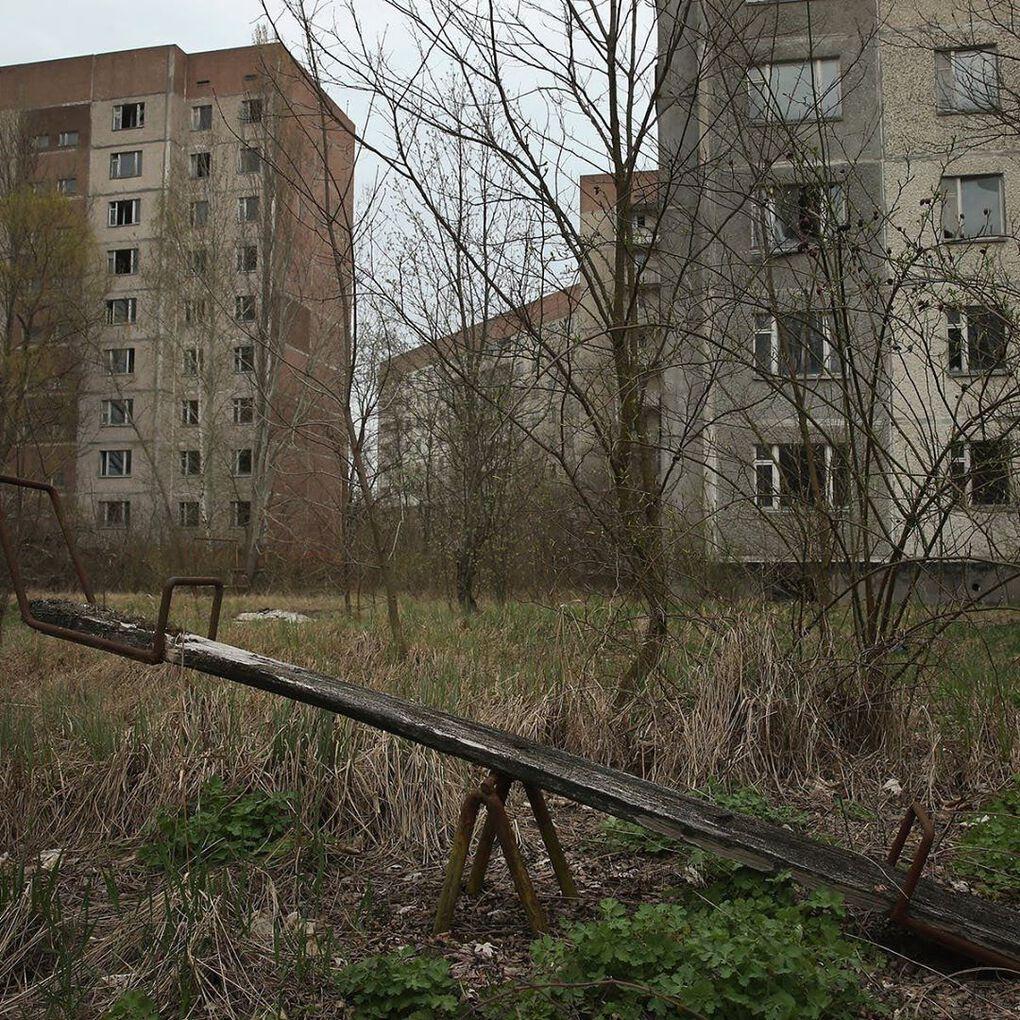 socialistvisuals 65215754 2336377276684983 5712660501175318756 n - 20 фотографий из Чернобыля, которые показывают, как природа восстанавливает заражённую землю