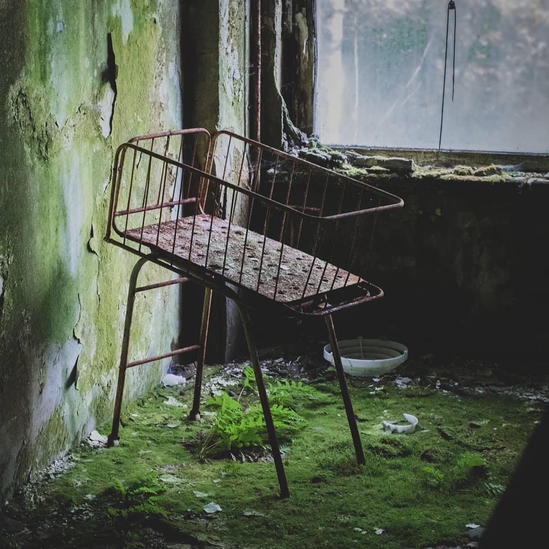 stechanka 64792433 143735500136826 7785070598813742607 n - 20 фотографий из Чернобыля, которые показывают, как природа восстанавливает заражённую землю