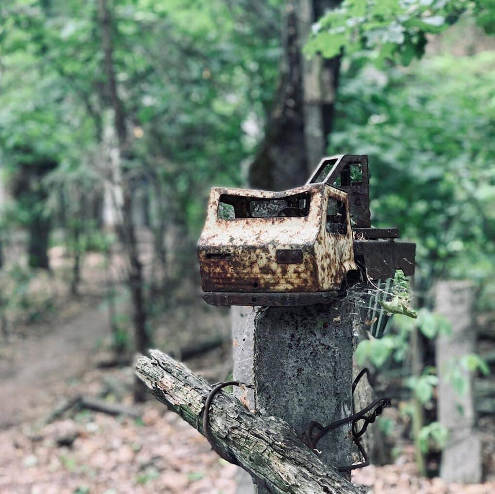 valldemarka 62515322 392893488015191 200495781582427714 n - 20 фотографий из Чернобыля, которые показывают, как природа восстанавливает заражённую землю