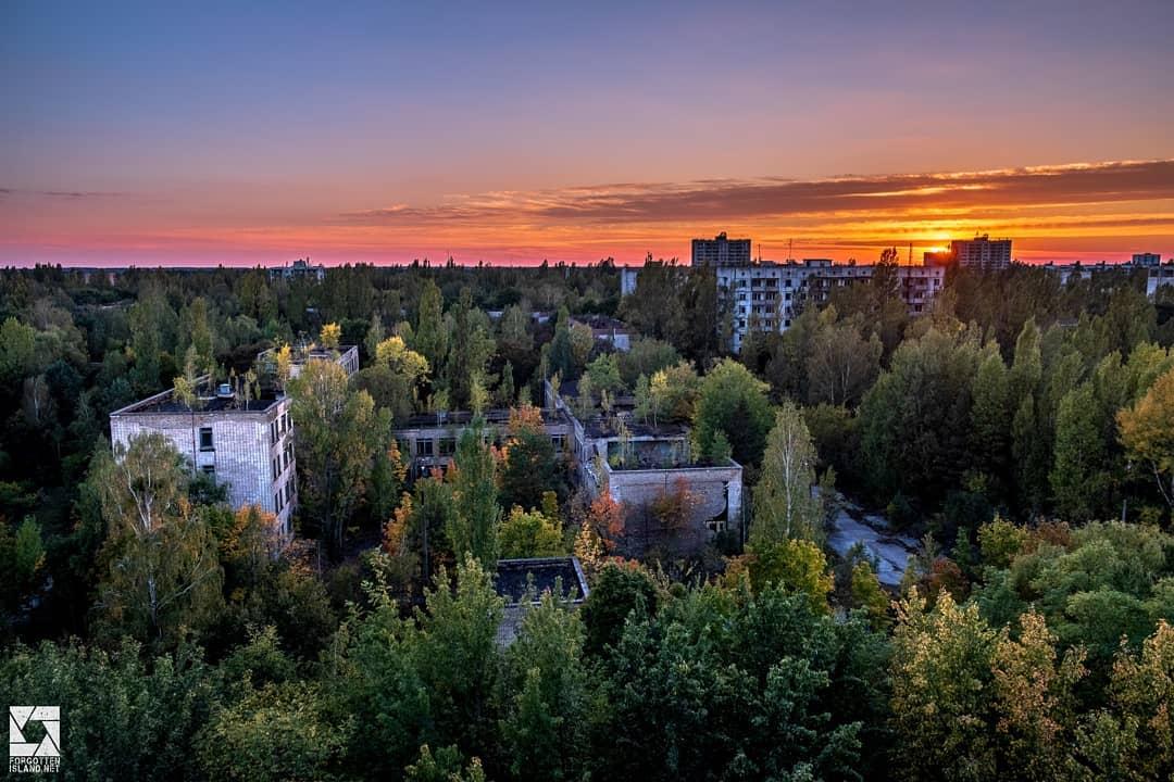 zonafest official 62414411 459235997976039 3177572527781023585 n - 20 фотографий из Чернобыля, которые показывают, как природа восстанавливает заражённую землю
