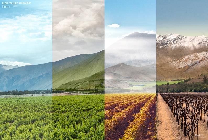 05 one photo four seasons elqui valley chile - Одно фото — четыре сезона: как меняются достопримечательности мира в каждое время года