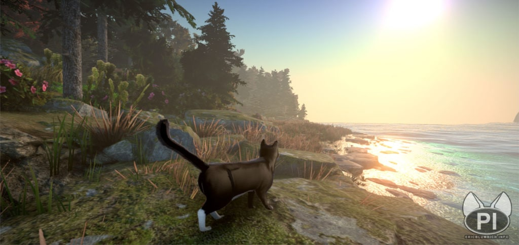 1558 1024x484 - В сети появились кадры и видео из компьютерной игры про котов. Да, управлять нужно будет котами!