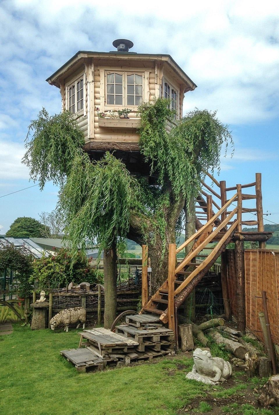 15764862 7223977 the tree house was built upon a willow tree that terry had inten a 30 1562578227654 1 - Британец хотел спилить дерево, но вид оттуда оказался так хорош, что он построил на нём домик