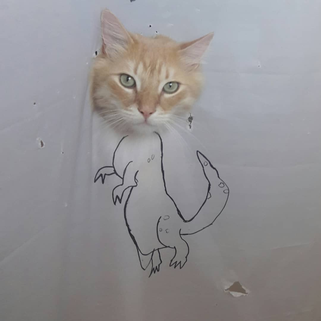 38795881 222772171732585 338807283964182528 n - Кот рвал шторки в ванной, и хозяйка решила это исправить — она начала дополнять дырки рисунками