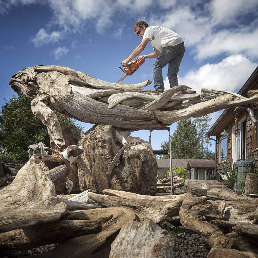 41506887 1812586942110981 5833138558080122880 n - Художник из Вашингтона создаёт скульптуры из сухих деревяшек, от которых дух захватывает