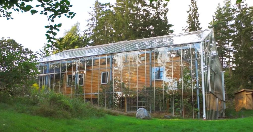 Шведская семья превратила свой дом в огромную теплицу, жизни в которой позавидуют не только помидоры