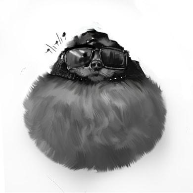 debo0xb - Пёс в солнечных очках выглядел настолько круто, что попал в битву фотошоперов и стал ещё круче