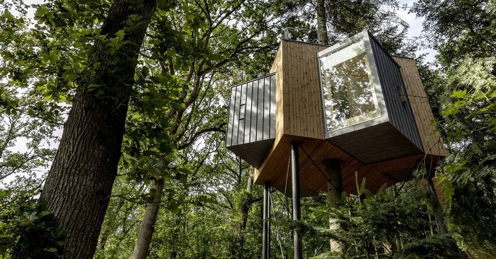 В Дании построили отель на дереве, и он — идеальное место для любителей тишины и спокойствия