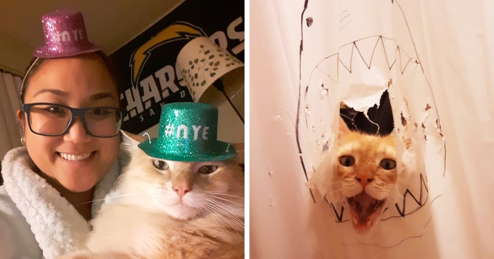 Кот рвал шторки в ванной, и хозяйка решила это исправить — она начала дополнять дырки рисунками
