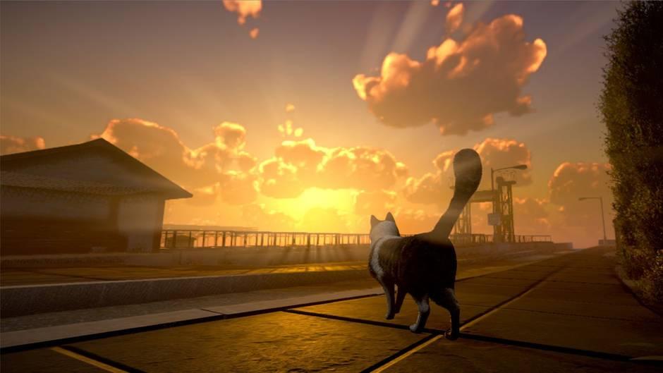 peace island bild - В сети появились кадры и видео из компьютерной игры про котов. Да, управлять нужно будет котами!