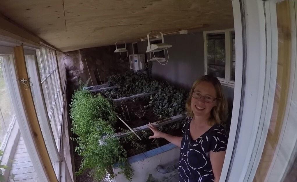 screenshot 14 - Шведская семья превратила свой дом в огромную теплицу, жизни в которой позавидуют не только помидоры