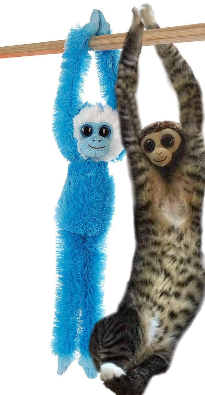 ypz2ja3 - У растянувшегося котика в неожиданном месте образовалась обезьянка. Фотошоп-веселья было не избежать