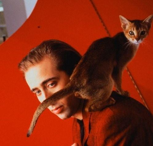 1566299682 413da33b580e80292390f527005382ca - 25 редких фотографий, на которых знаменитости запечатлены со своими любимыми котиками