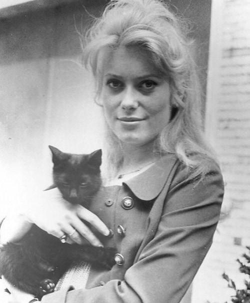 1566301341 e489ca11a143feee334272f21ba67116 - 25 редких фотографий, на которых знаменитости запечатлены со своими любимыми котиками