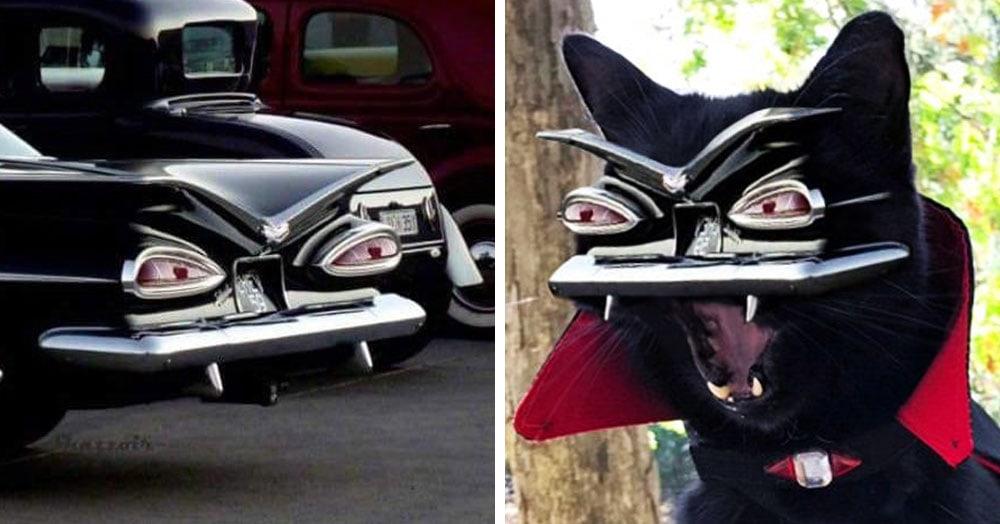 Пользователи сети увидели в задней части автомобиля злобное лицо и устроили жаркий фотошоп-баттл