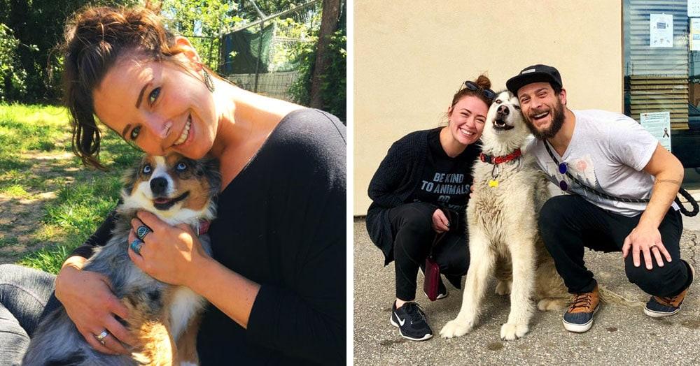 17 собак, которых только что забрали из приюта — и они не могут скрыть своего счастья