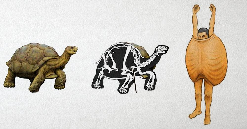 Японец представляет, как выглядели бы люди, будь они похожи на животных, и показывает это в рисунках