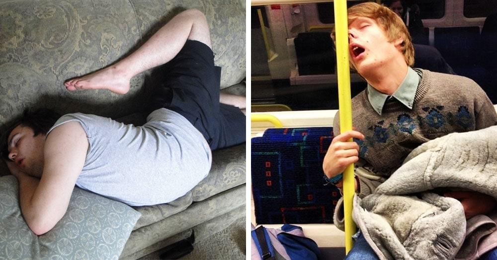 17 забавных фотографий, герои которых знают, как эффектно уснуть