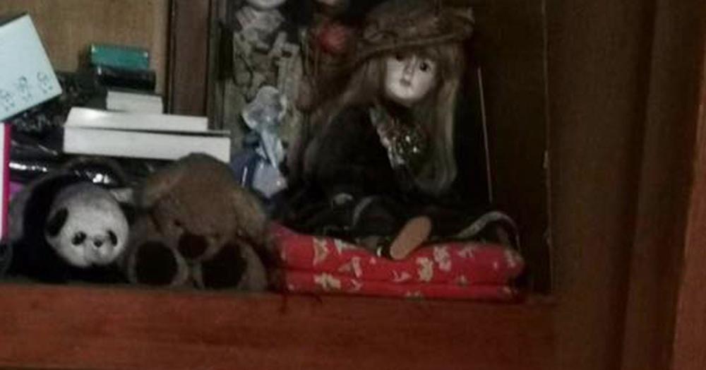 Японцы слышали шорохи в комнате умершей бабушки. Думали, что духи, а оказалось — милота с лапками