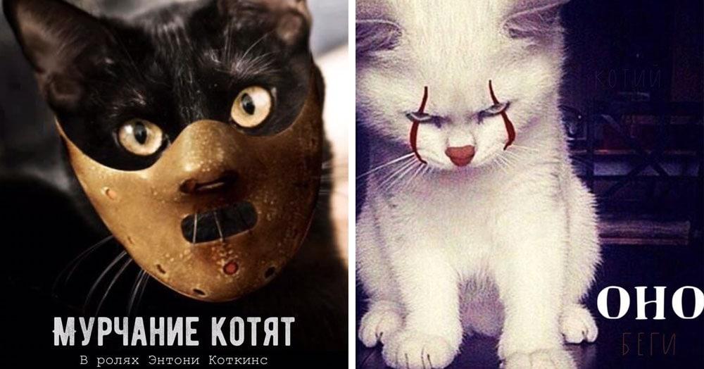 Как выглядели бы постеры популярных фильмов, если бы в них снимались котики