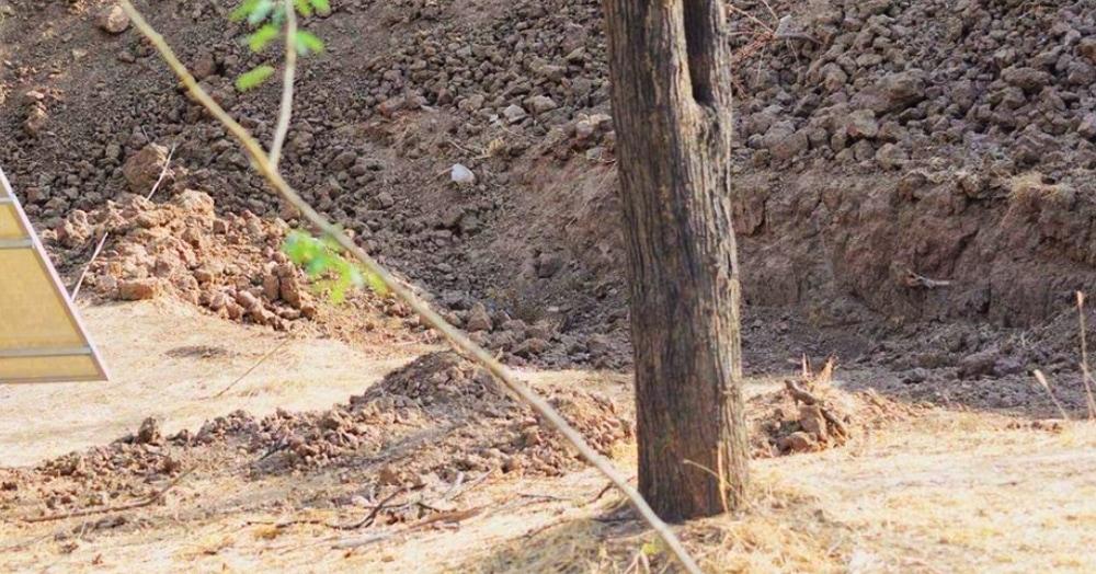 Девушка поделилась хитрым фото, на котором прячется леопард. Но кажется, что там есть только камни