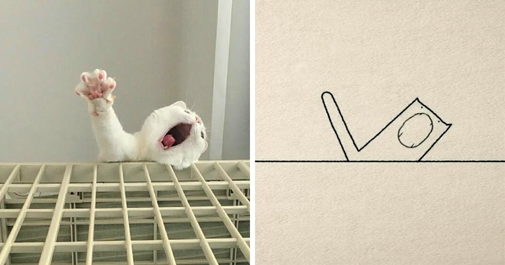17 животных, которых художники нарисовали так плохо, что даже хорошо