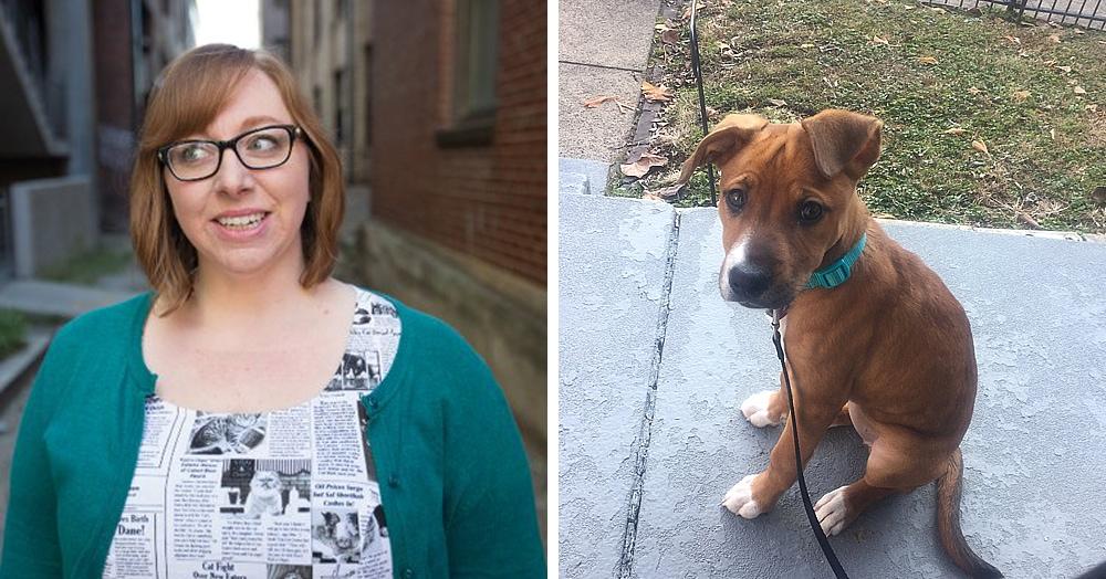 Женщина увидела собаку, и её кличка оказалась роковой. Они уже встречались, и это просто судьба