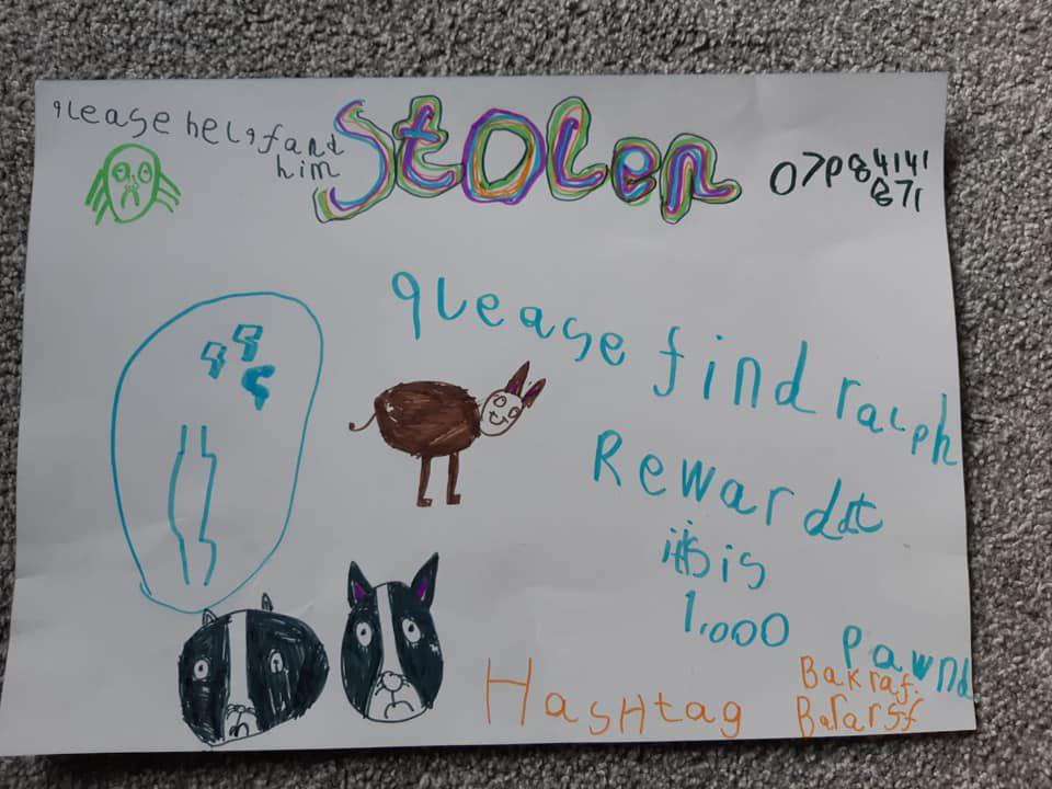 Мальчик хотел найти похищенного пса и рисовал плакаты как мог. Пес найден, а фоторобот стал популярен на весь интернет
