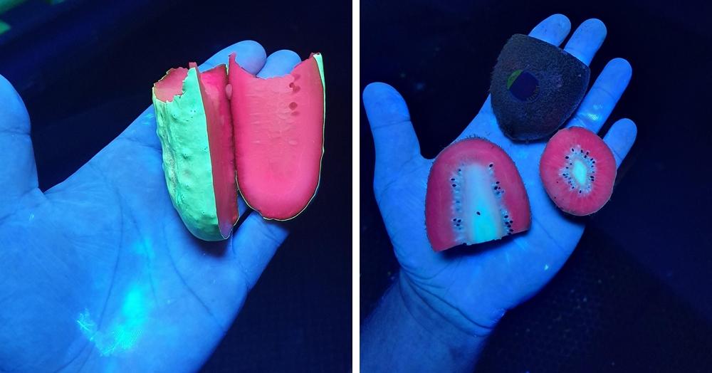 Как выглядят в ультрафиолете огурцы и перец? Пользователь Reddit провёл любопытный эксперимент