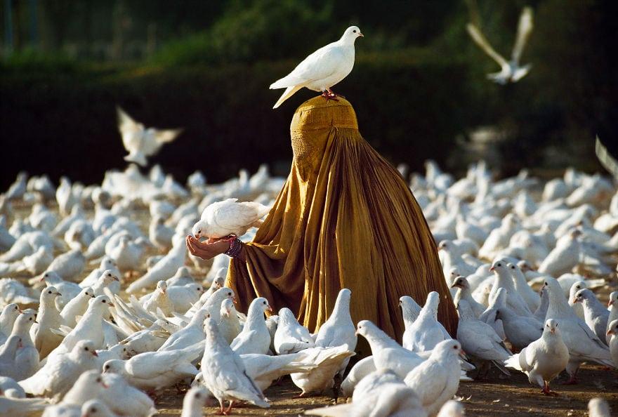 20 ярких снимков известного фотографа, который показал трогательную связь между людьми и животными