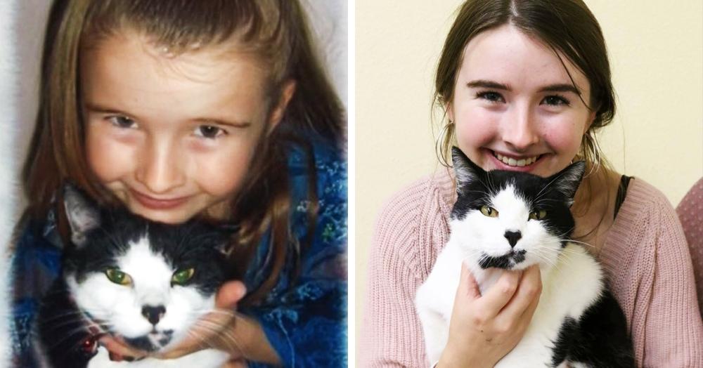 Девушка думала, что её кот пропал, пока не устроилась работать в приют три года спустя — и не увидела там знакомую мордочку
