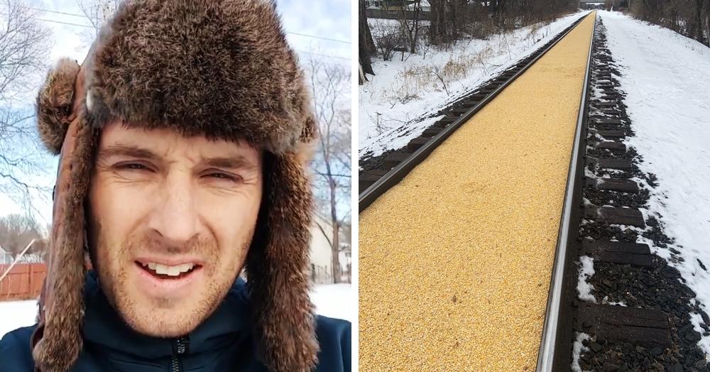 Грузовой поезд оставил след из кукурузы, которая просыпалась ровно между рельсами, и это зрелище — верх перфекционизма