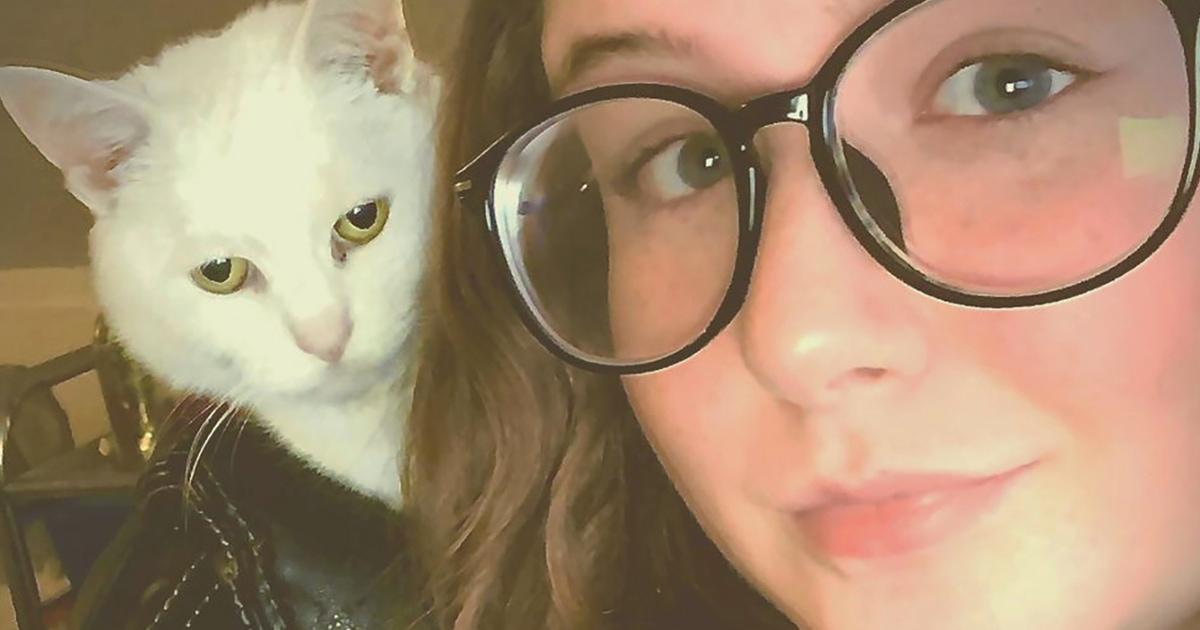 В сети появился снимок с котом рок-звездой в кожаной куртке. Это оптическая иллюзия, но она донельзя крута
