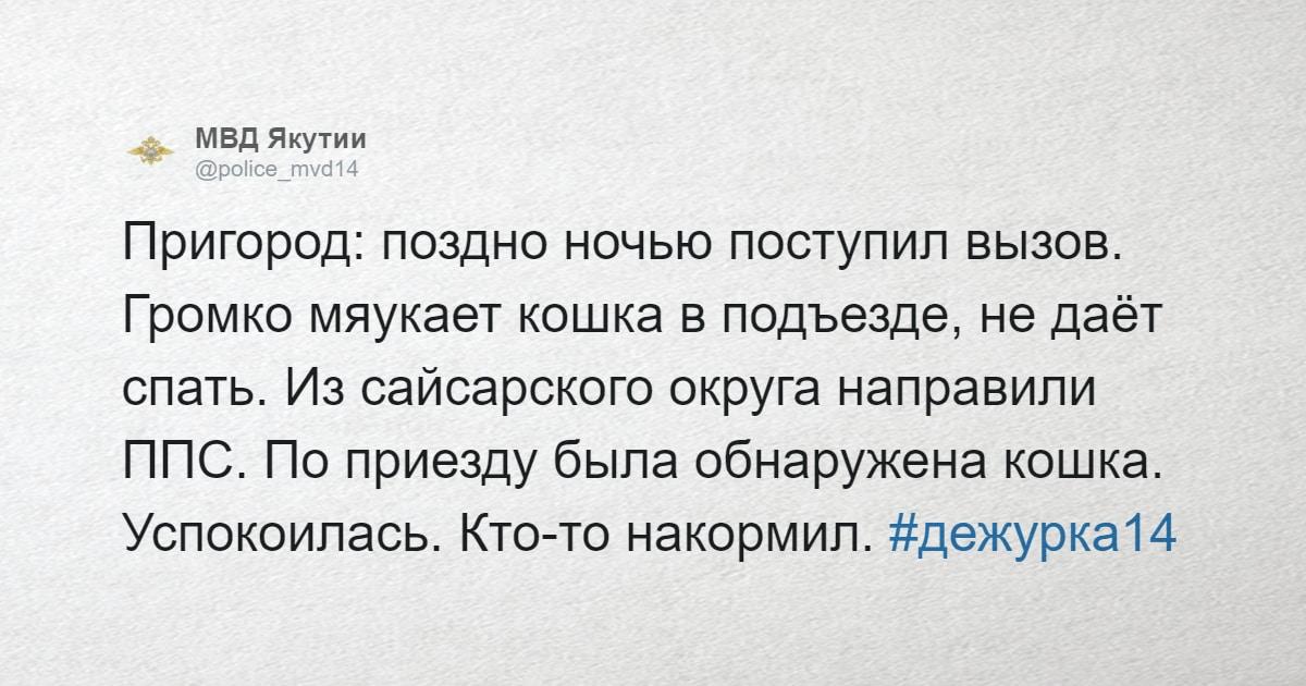 МВД Якутии ведёт Твиттер, в котором рассказывает о необычных вызовах, и интернет от него в восторге