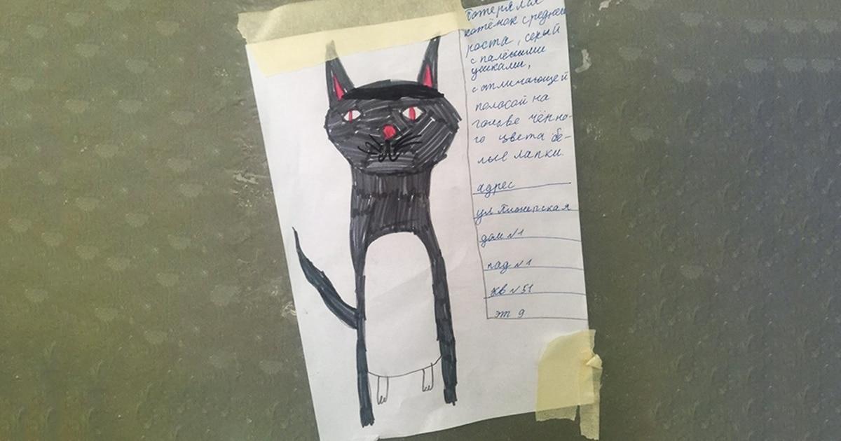 У пенсионеров пропал кот, их маленькая соседка увидела объявление и нарисовала его фоторобот. И кот нашёлся!