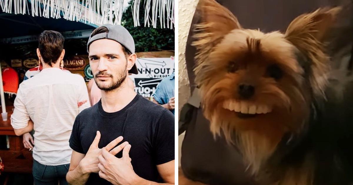 Пёс украл у хозяина искусственные зубы и стал монстром. Правда, вызывает он не ужас, а безостановочный смех