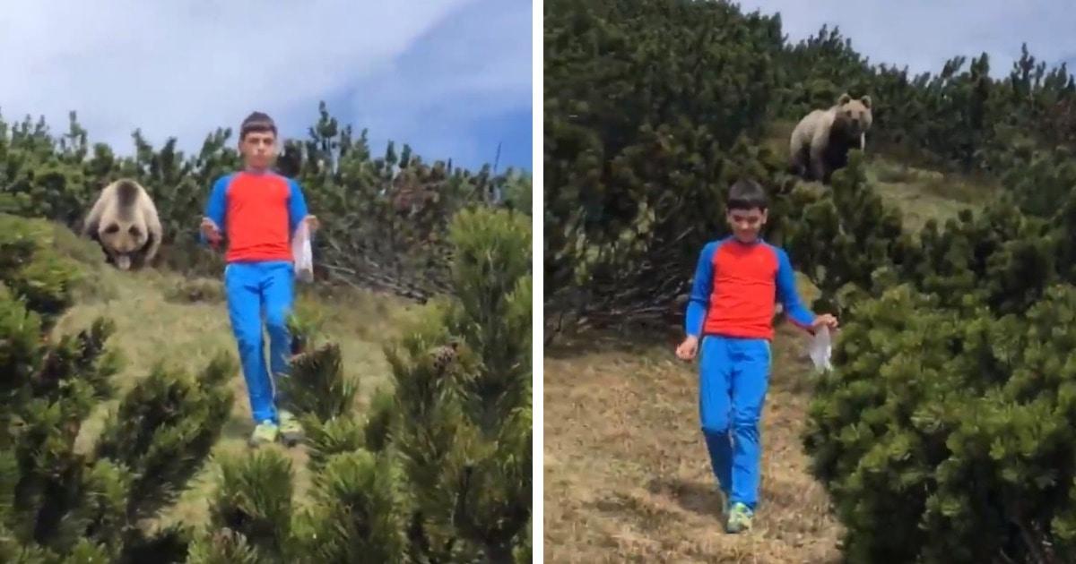12-летний мальчик наткнулся на медведя и действовал как по учебнику. Но смотреть на это всё равно страшно