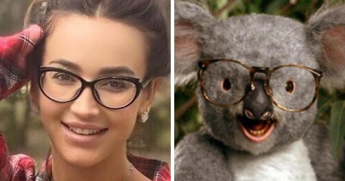 Коала Бузова и панда Галустян: приложение Gradient может определить по фото, на какое животное вы похожи