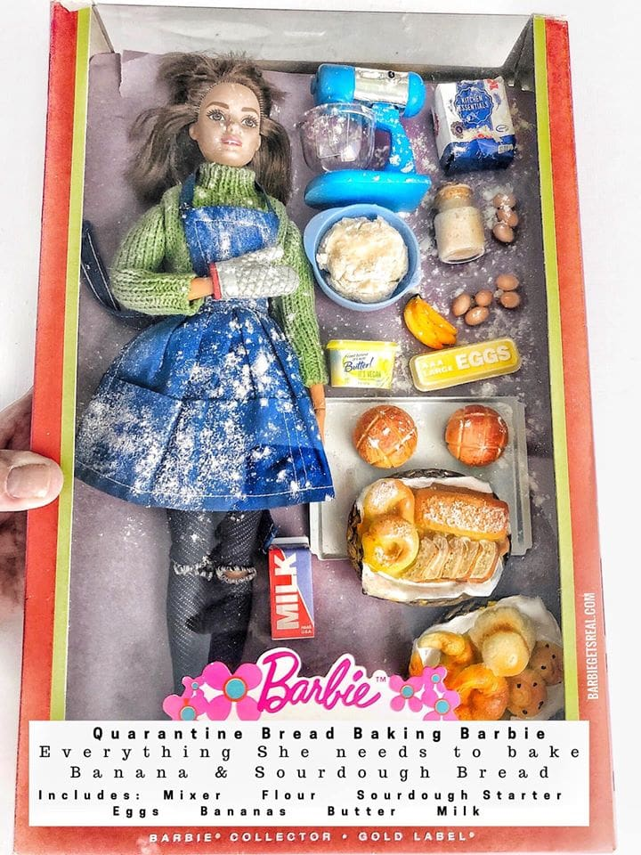 Quarantine Edition of Realistic Barbie Dolls