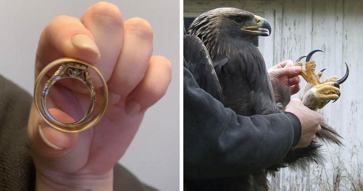 15 фотографий предметов, чьи реальные размеры стали понятны в сравнении