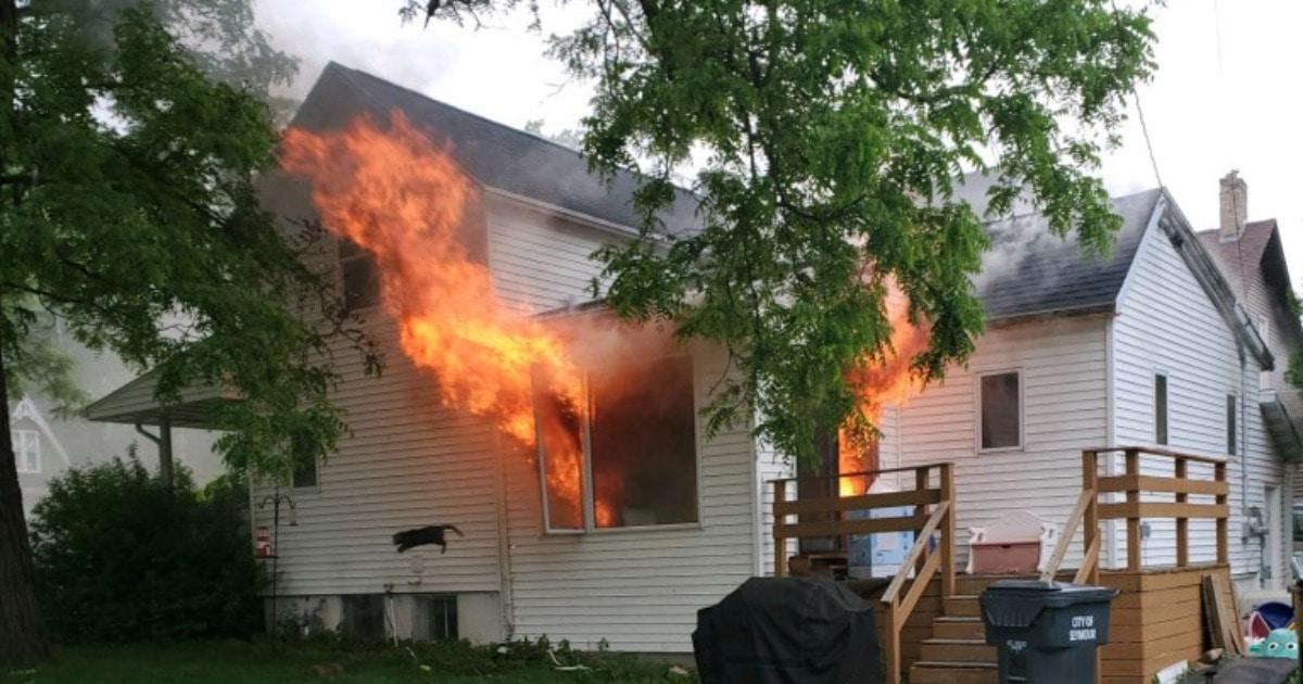 Кошку не вынесли из горящего дома, но она не растерялась и выбралась сама! Теперь она новый герой мемов