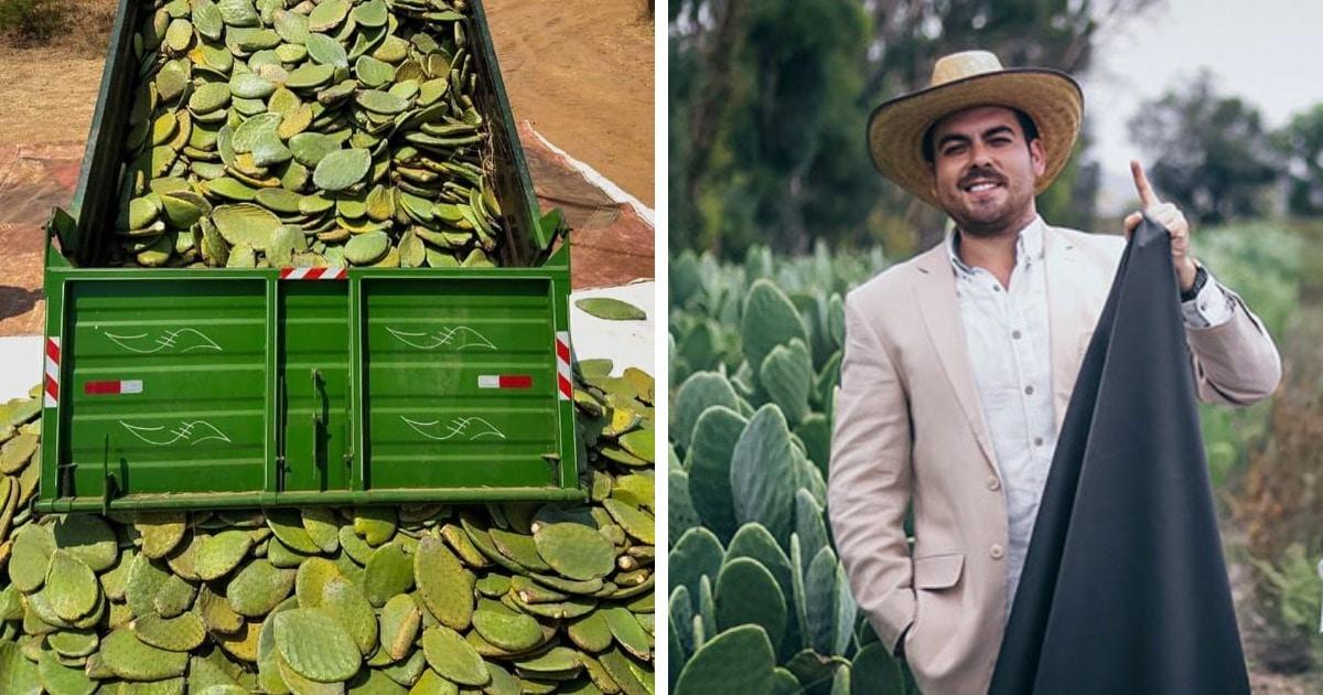 Два мексиканца придумали натуральную веганскую альтернативу коже. Они предлагают делать её из кактусов!