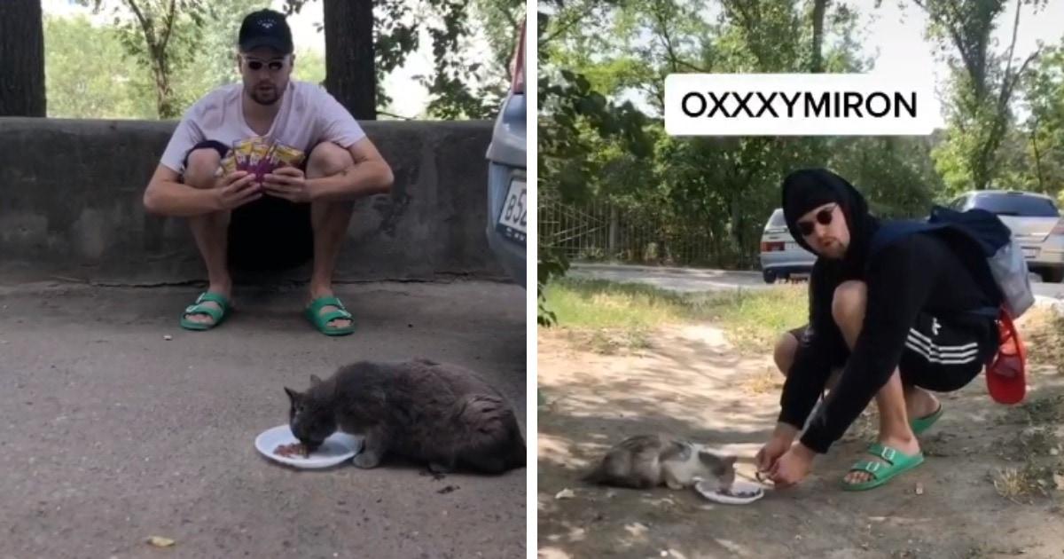 Тиктокер покормил уличных котов в стиле известных рэперов. Люди узнали своих кумиров, а ролик стал вирусным