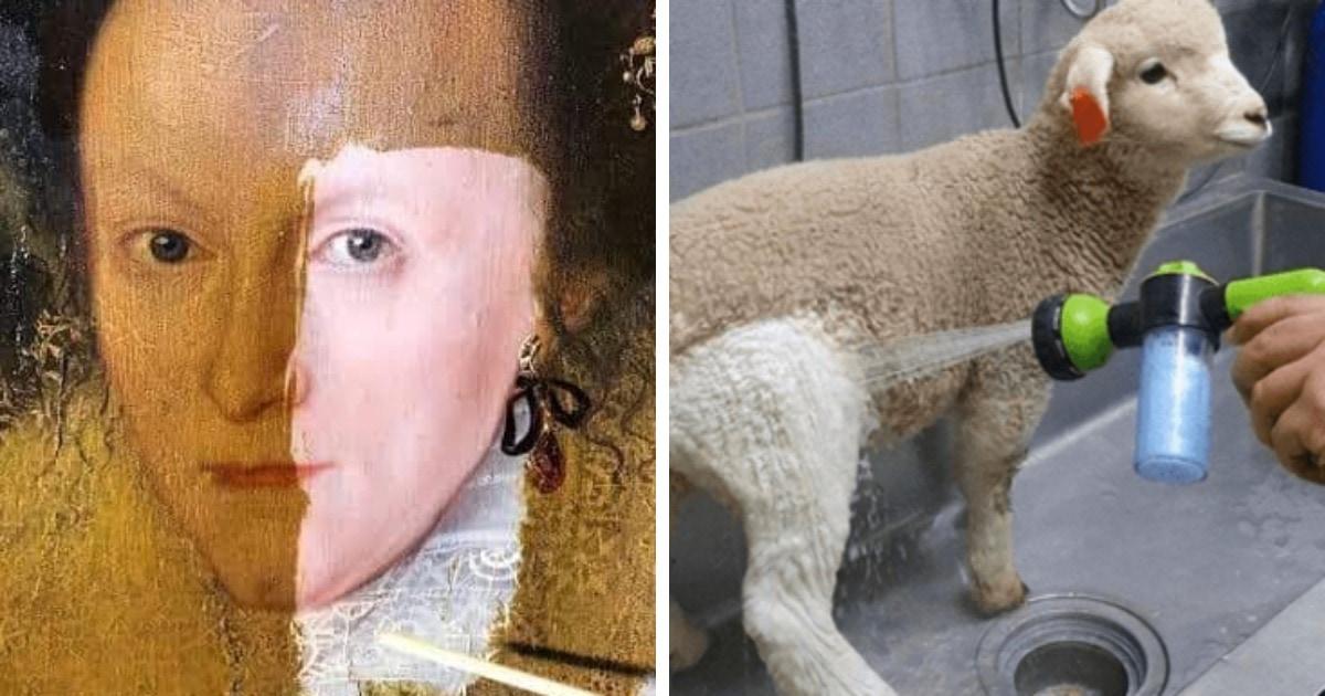 17 фотографий вещей до и после того, как за них взялись настоящие адепты чистоты