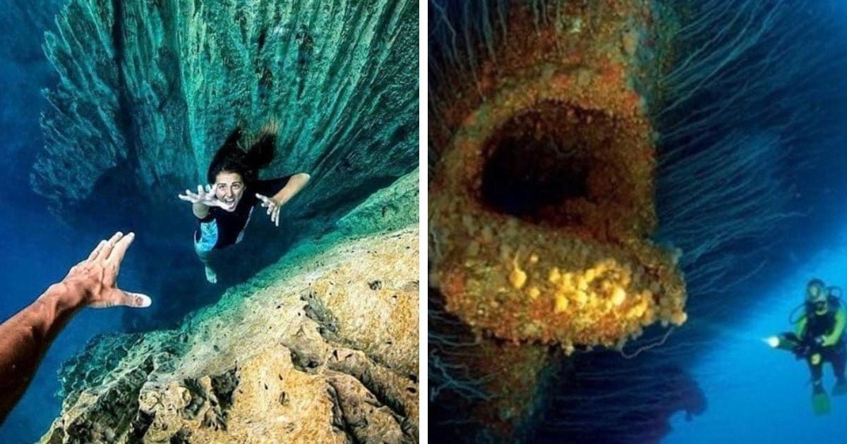 16 пугающих фотографий подводных глубин, после которых вы даже на местную речку будете поглядывать с опаской