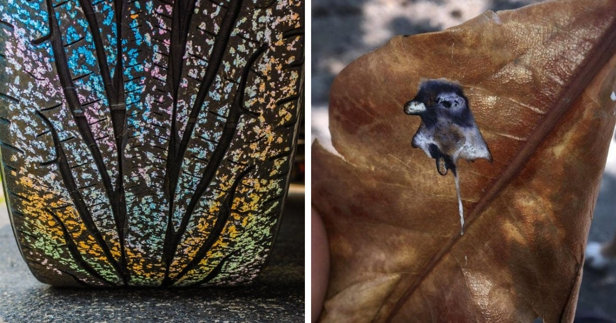 16 удивительных фотографий совершенно обычных предметов, которые случайно превратились в искусство