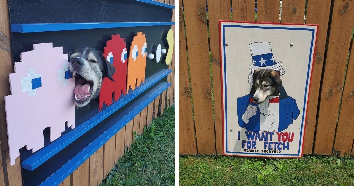 Двое псов любили смотреть на соседей через отверстие в заборе, и хозяин сделал их появления ещё эффектнее