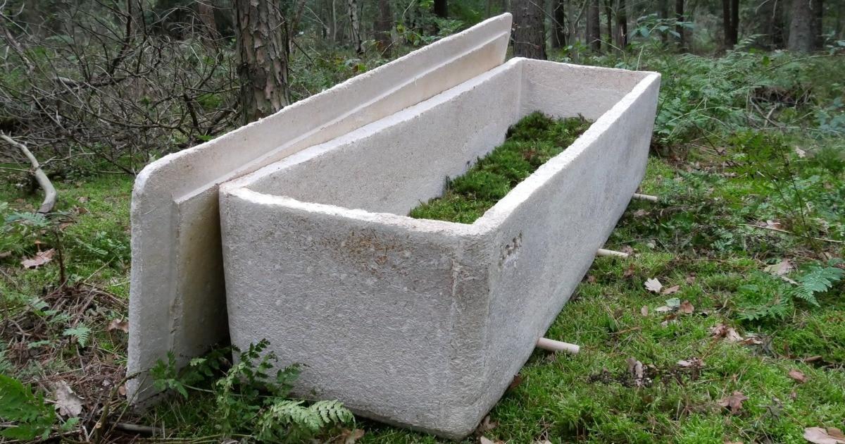 Нидерландский учёный разработал эко-гроб из грибов, который за три года превратит тело человека в компост
