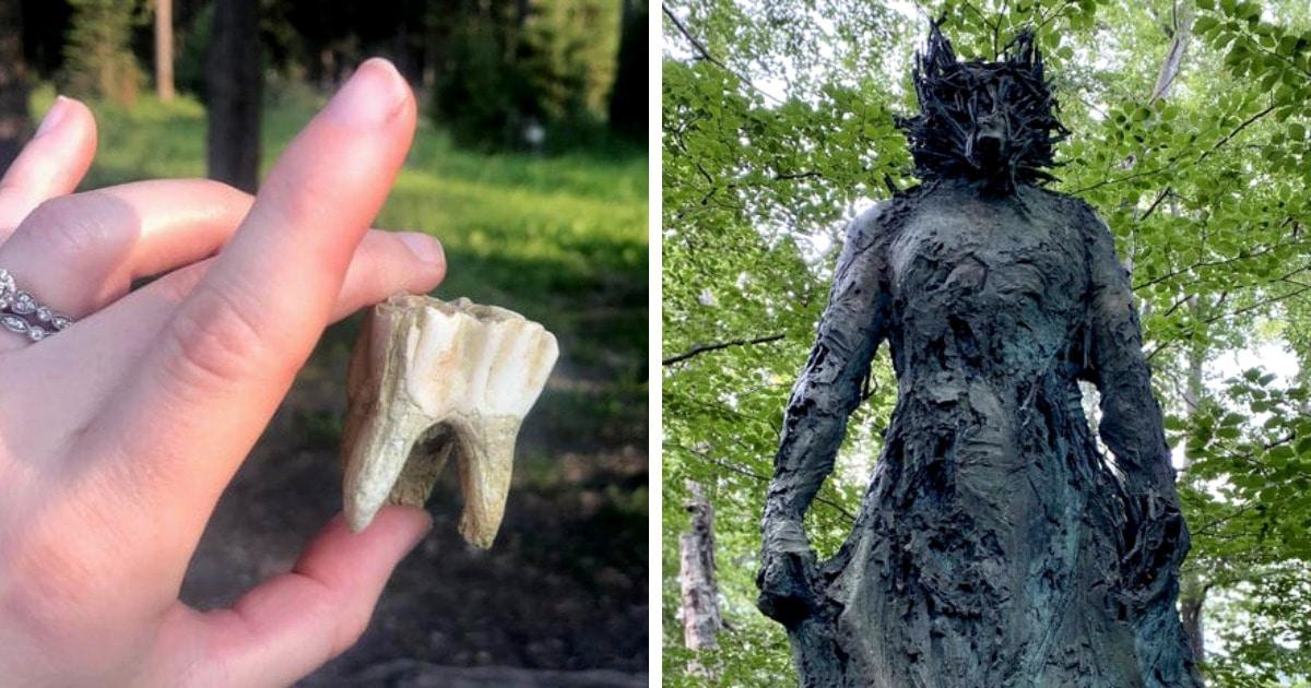 19 случаев, когда во время прогулок по лесу люди натыкались на таинственные и даже довольно жутковатые вещи